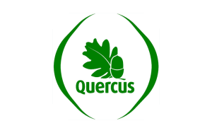 Quercus-featured