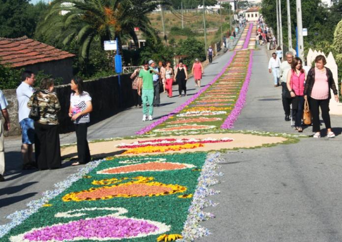 Popula o de alfena faz tapete de flores de tr s quil metros verdadeiro olhar - Alfombras portugal ...